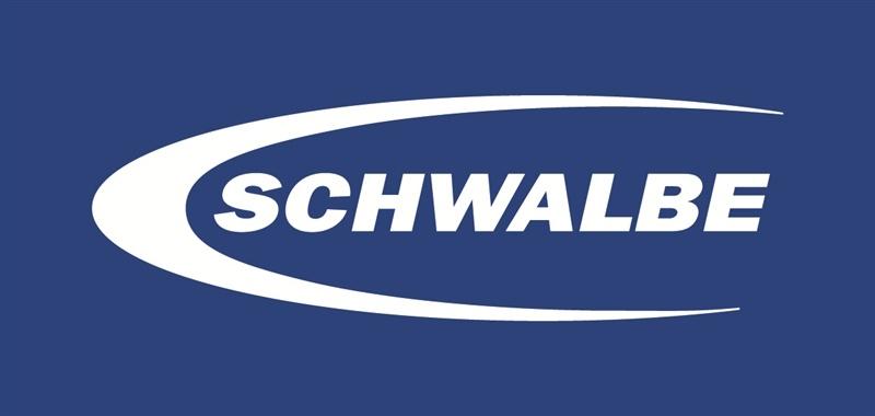 Schwalbe bei