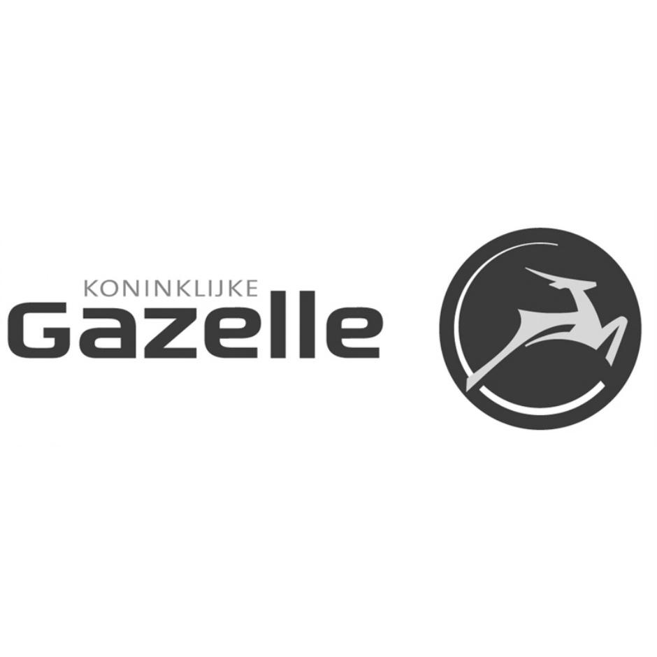 Gazelle Tour LTD 7-Gang Herren Hollandrad Modell 2016
