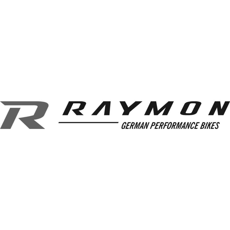 Raymon E-Tourray 5.0 - 2019