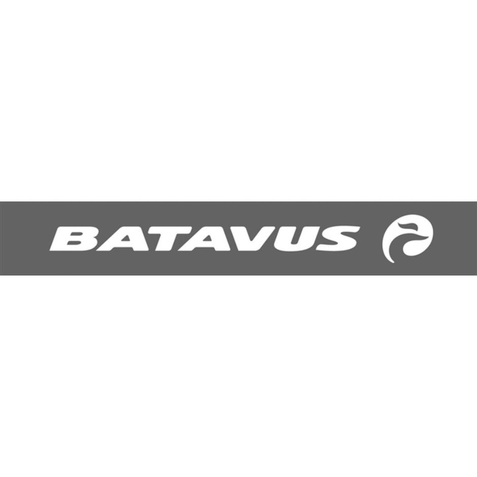 Batavus Diva Plus