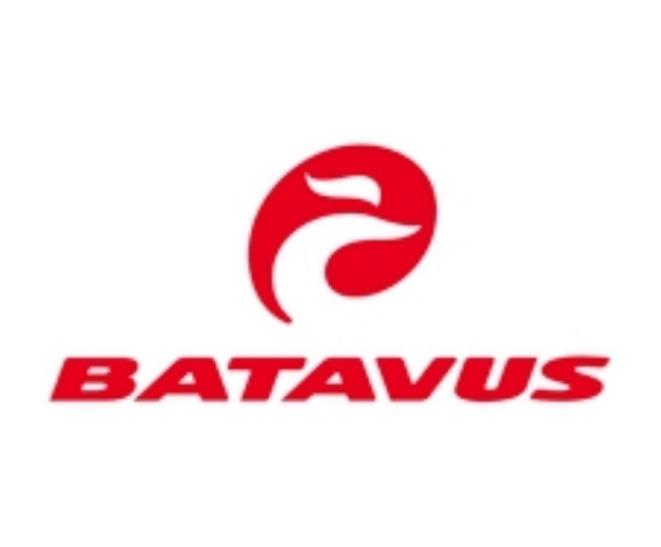 Batavus & Greens E-Bikes
