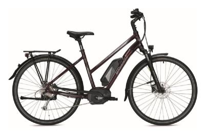 E-Bike-Angebot MorrisonE9.0