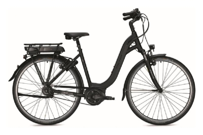 E-Bike-Angebot FalterE 9.25