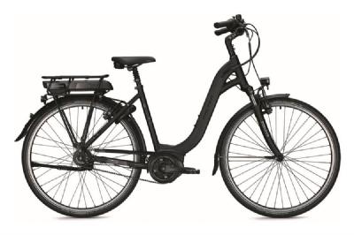 E-Bike-Angebot FalterE 9.25 RT