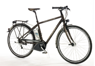 E-Bike-Angebot Raleigh Dover Lite 8 Gang