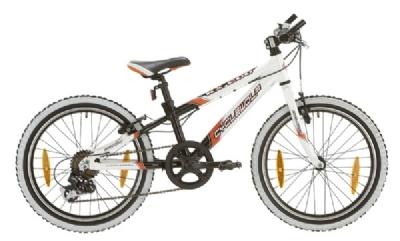 Kinder / Jugend-Angebot CycleWolfTeam Kids KX200