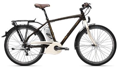 E-Bike-Angebot RaleighLeeds Tour Herren