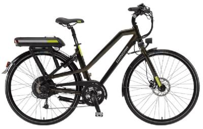 E-Bike-Angebot WinoraF2 11Ah