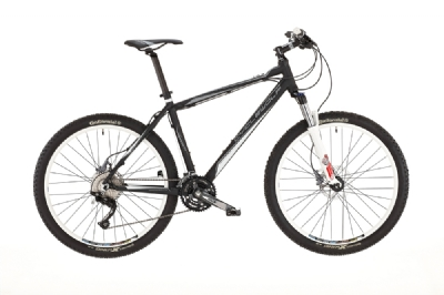Mountainbike-Angebot CycleWolfLoup 26