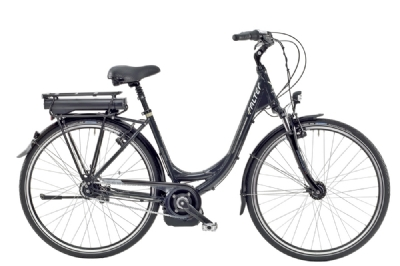 E-Bike-Angebot Falter EBike P 9.0 E Wave