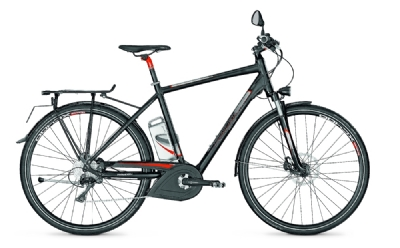 E-Bike-Angebot Raleigh Stoker 40-36