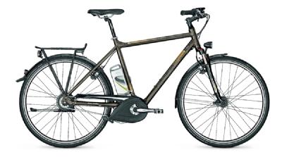 E-Bike-Angebot RaleighStoker 360