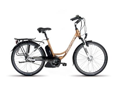 E-Bike-Angebot GepidaReptila