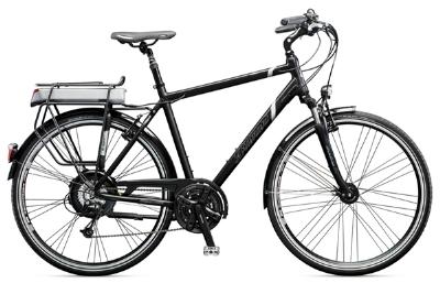 E-Bike-Angebot DiamantUbari DLX