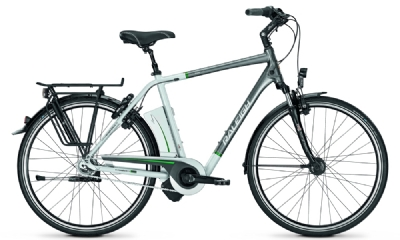 E-Bike-Angebot Raleigh Dover I HS 17 AH 612 WH