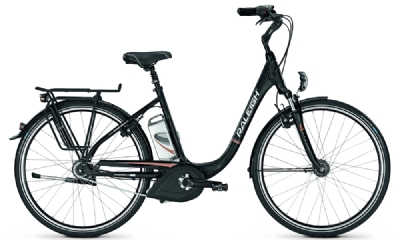E-Bike-Angebot RaleighDover de Luxe P8R
