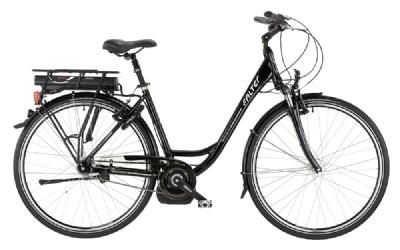 E-Bike-Angebot FalterP 9.0 E