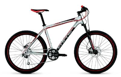 Mountainbike-Angebot FocusFat Boy