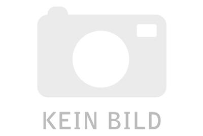 E-Bike-Angebot StaigerSINUS / STAIGER BC 50 BOSCH RT