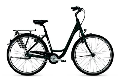 Citybike-Angebot RaleighDevon HS