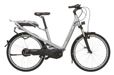 E-Bike-Angebot Riese und M�llerAvenue NuVinci 55