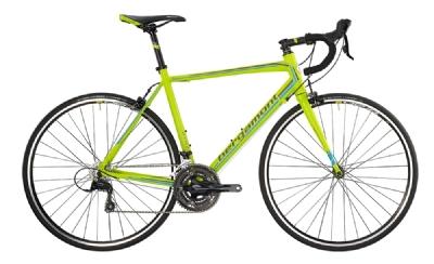 Rennrad-Angebot BergamontPrime 4.4 (1x53/1x62)