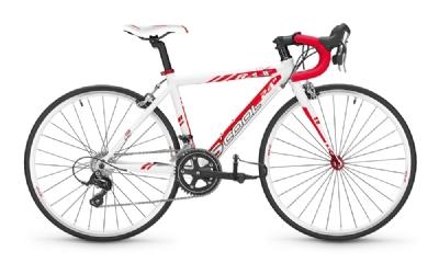 Rennrad-Angebot S�coolRax 24