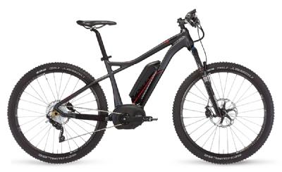 Mountainbike-Angebot FLYERGoroc
