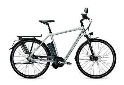 E-Bike-Angebot RaleighStoker Impulse S 11