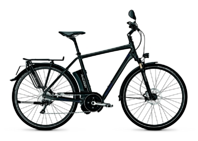 E-Bike-Angebot Raleigh Stoker Impulse S 10