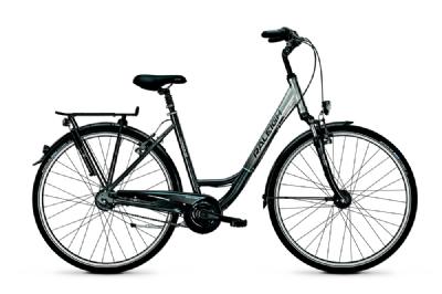 Citybike-Angebot RaleighUnico Plus