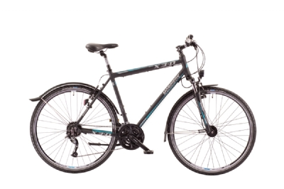 Crossbike-Angebot MorrisonX 3.0