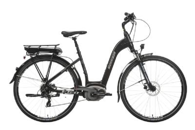 E-Bike-Angebot MorrisonE9.5
