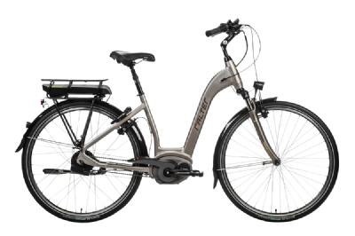 E-Bike-Angebot FalterE9.9