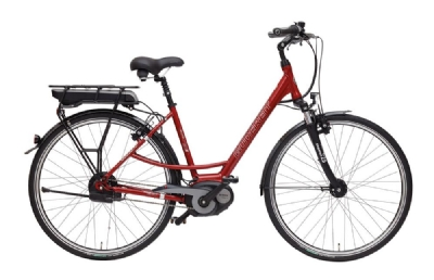 E-Bike-Angebot GudereitEC 5 400 AH