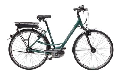 E-Bike-Angebot GudereitEC 4 400 AH