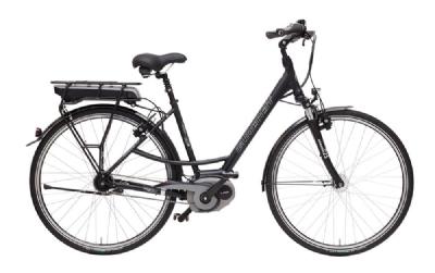 E-Bike-Angebot GudereitEC 2