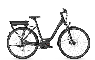 E-Bike-Angebot Raleigh STOKER B9