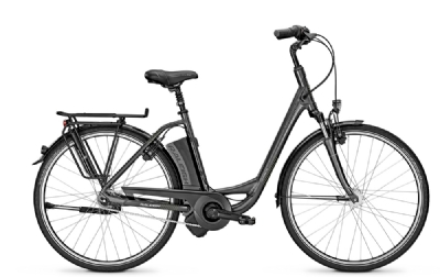 E-Bike-Angebot Raleigh Dover Impulse 7 R HS