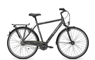 Citybike-Angebot RaleighUnico Dlx
