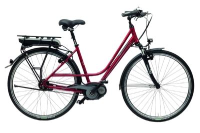 E-Bike-Angebot GudereitEC-4 500Wh mit Rücktrittbremse