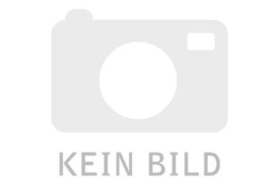 Hollandrad-Angebot GazelleCLASSIC