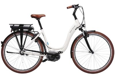 E-Bike-Angebot Riese und MüllerSwing nuvinci CX