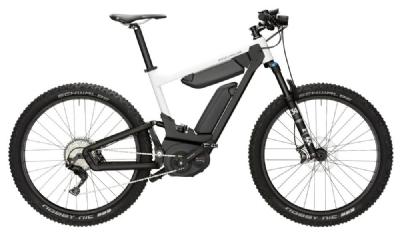 E-Bike-Angebot Riese und MüllerDelite Mountain