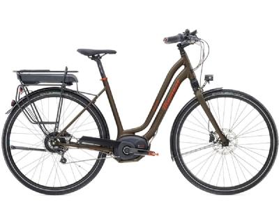 E-Bike-Angebot DiamantElan Elite +