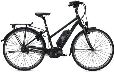 E-Bike-Angebot FalterE 9.8