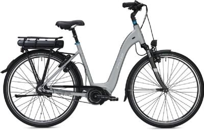 E-Bike-Angebot FalterE8.8
