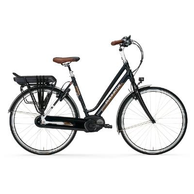 E-Bike-Angebot GazelleUltimate C1.1