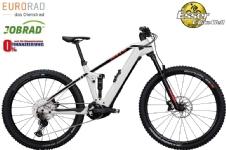 BullsSONIC EVO AM 3 Carbon light-grey