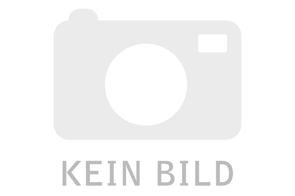 R Raymon TourRay E 4.0 - 2021 BILD FEHLT